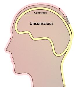 Unconscious Brain
